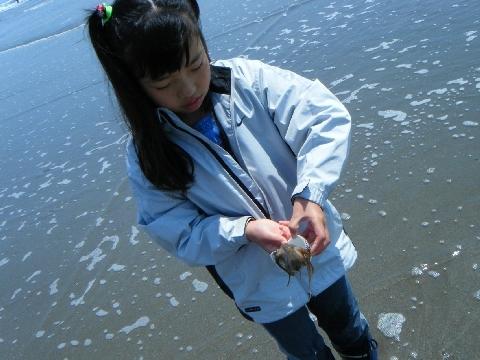 2010  5月1日潮干狩り 155.jpg