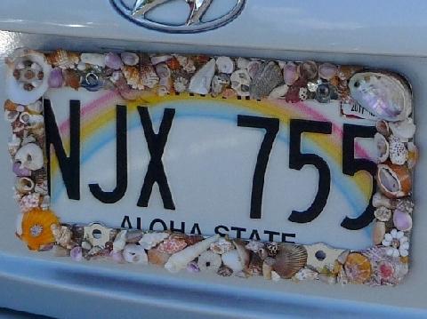 2010  8月オアフパゴダ旅行3 608.jpg