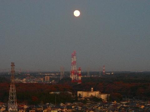 2011 12月14日日常 011.jpg