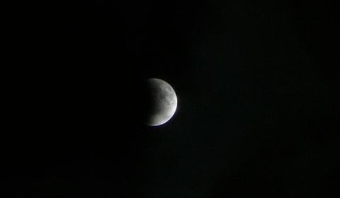 2011 12月14日日常 018.jpg