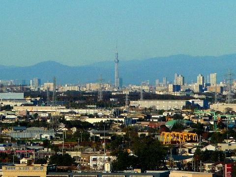 2011 12月4日紅葉の光景 029.jpg