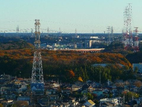 2011 12月4日紅葉の光景 045.jpg