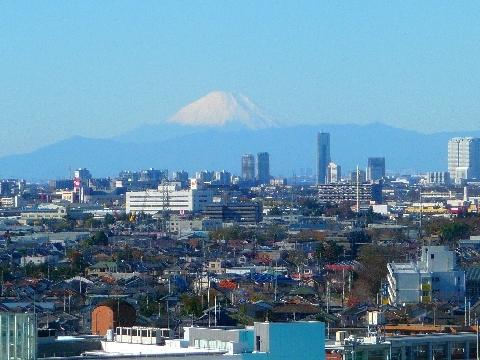2011 12月4日紅葉の光景 079.jpg