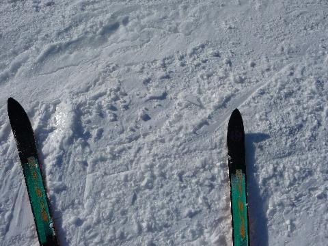 2011 2月26日千葉村スキー 402.jpg