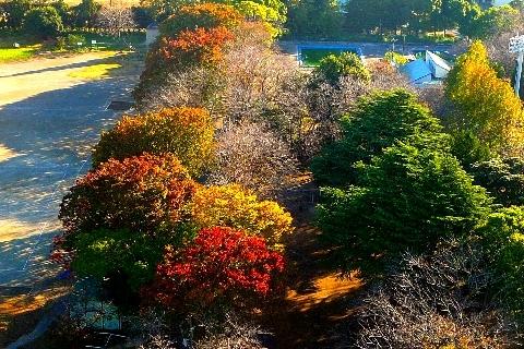 2012 11月2日富士山 068.jpg