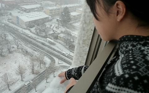 2013 1月14日雪 095.jpg