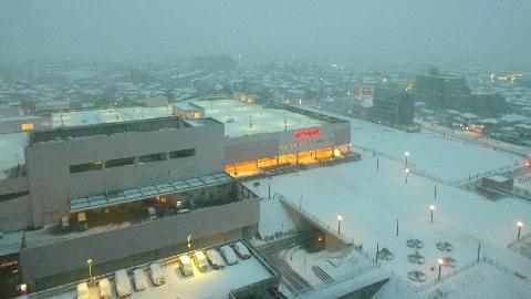 2013 1月14日雪 199.jpg
