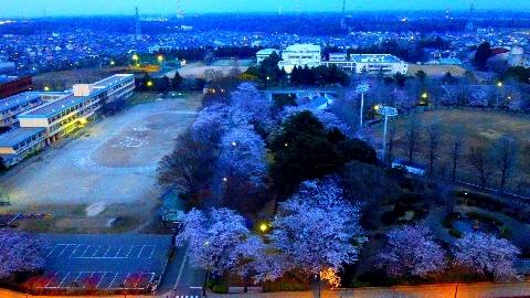 2013 3月24日福星寺 075.jpg