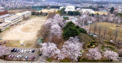 2013 3月24日福星寺 205.jpg
