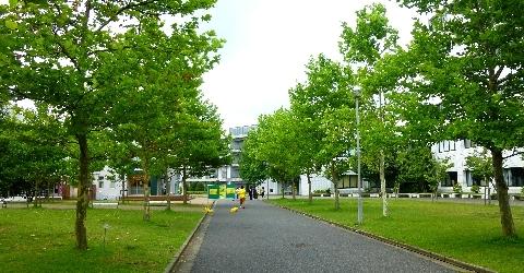 2013 8月3日オープンキャンパス 036.jpg